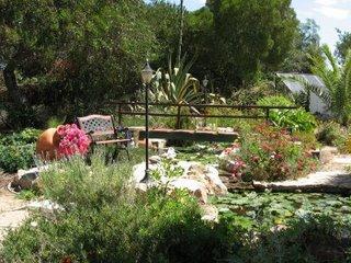 Villa Algarve garden
